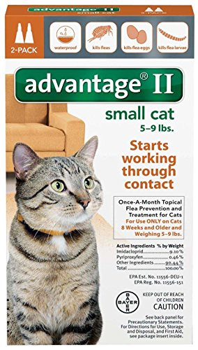 Bayer Healthcare Advantage II Small Cat (2 Pack)